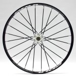 Showing a rear wheel with 24 spokes